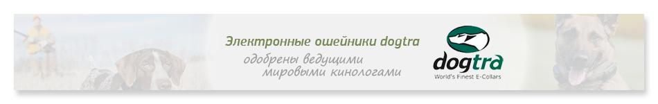 PetsCage.ru — официальный дилер продукции Dogtra