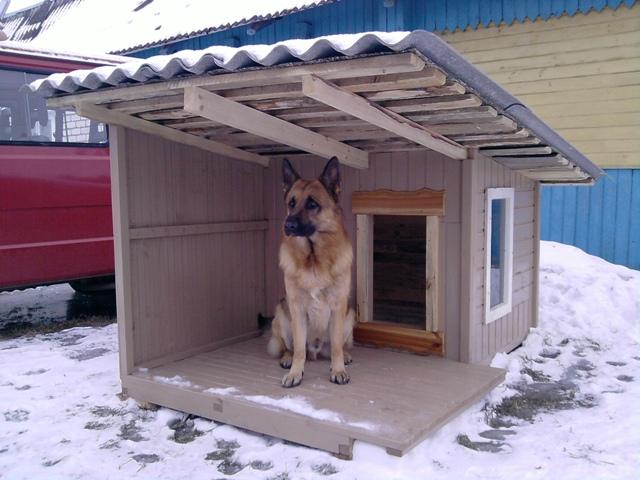 Оригинальная будка для собаки