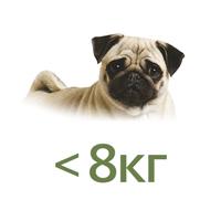Для собак до 8 кг