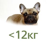 Для собак до 12 кг