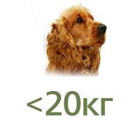 Для собак до 20 кг
