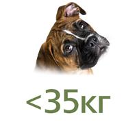 Для собак до 35 кг