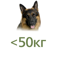 Для собак до 50 кг