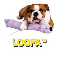 Loofa