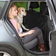 Подстилка в автомобиль для сиденья 140х160 см Trixie 1324 - вариант размещения пассажира и питомца
