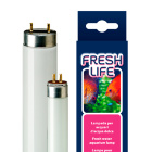 Лампа для аквариума с пресной водой Freshlife 54W T5
