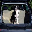Подстилка в автомобиль для сиденья 180х130 см Trixie 13238 - общий вид с питомцем