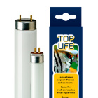 Лампа для аквариума с пресной и морской водой Toplife 30W T8