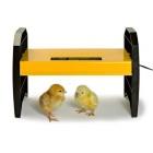Обогреватель для птенцов Ecoglow 20