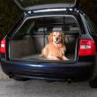 Перегородка в автомобиль для багажника раздвижная Trixie 1316 - применение