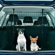 Перегородка в автомобиль для багажника сетка Trixie 1325 - применение