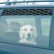 Решетка на окно в автомобиль Trixie 131101 - общий вид, применение