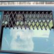 Решетка на окно в автомобиль Trixie 13101 - общий вид, применение