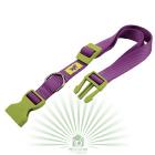 Ошейник Club Colours C 25/70 фиолетовый