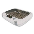 Домашний инкубатор Rcom 50 Max для яиц