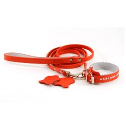 Комплект: ошейник и поводок 331013 рыжий