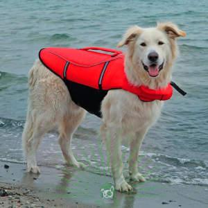 Спасательный жилет для собаки, размер L Trixie 30144