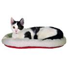 Лежак для кошек 45x30 см Trixie 28631