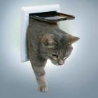 Дверь для кошки 2 позиции белая Trixie 38601