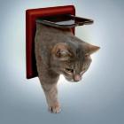 Дверь для кошки 2 позиции коричневая Trixie 38603
