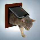 Дверь для кошки 4 позиции коричневая Trixie 38623