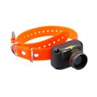 Запасной ошейник для Dogtra 2500T&B Orange