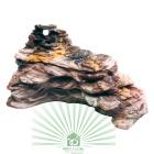 Скала декоративная Dover 7 для палюдариума Jamaica 60