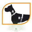 Шлейка Sport Dog P Small желтая - Шлейка Sport Dog - снятие мерок