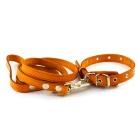 Комплект щенячий: ошейник и поводок, модель 072050