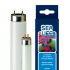 Лампа для аквариума с морской водой Sealife 24W T5