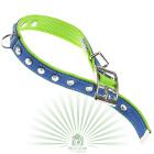 Ошейник Dual Diamonds CF 25/45 сине-зеленый
